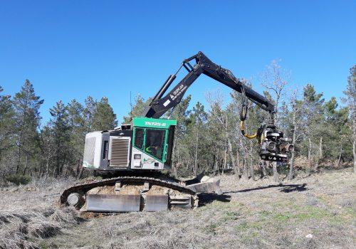 Procesadora De Cadenas TIMBERPRO TN725B Con AFM 60 Pine