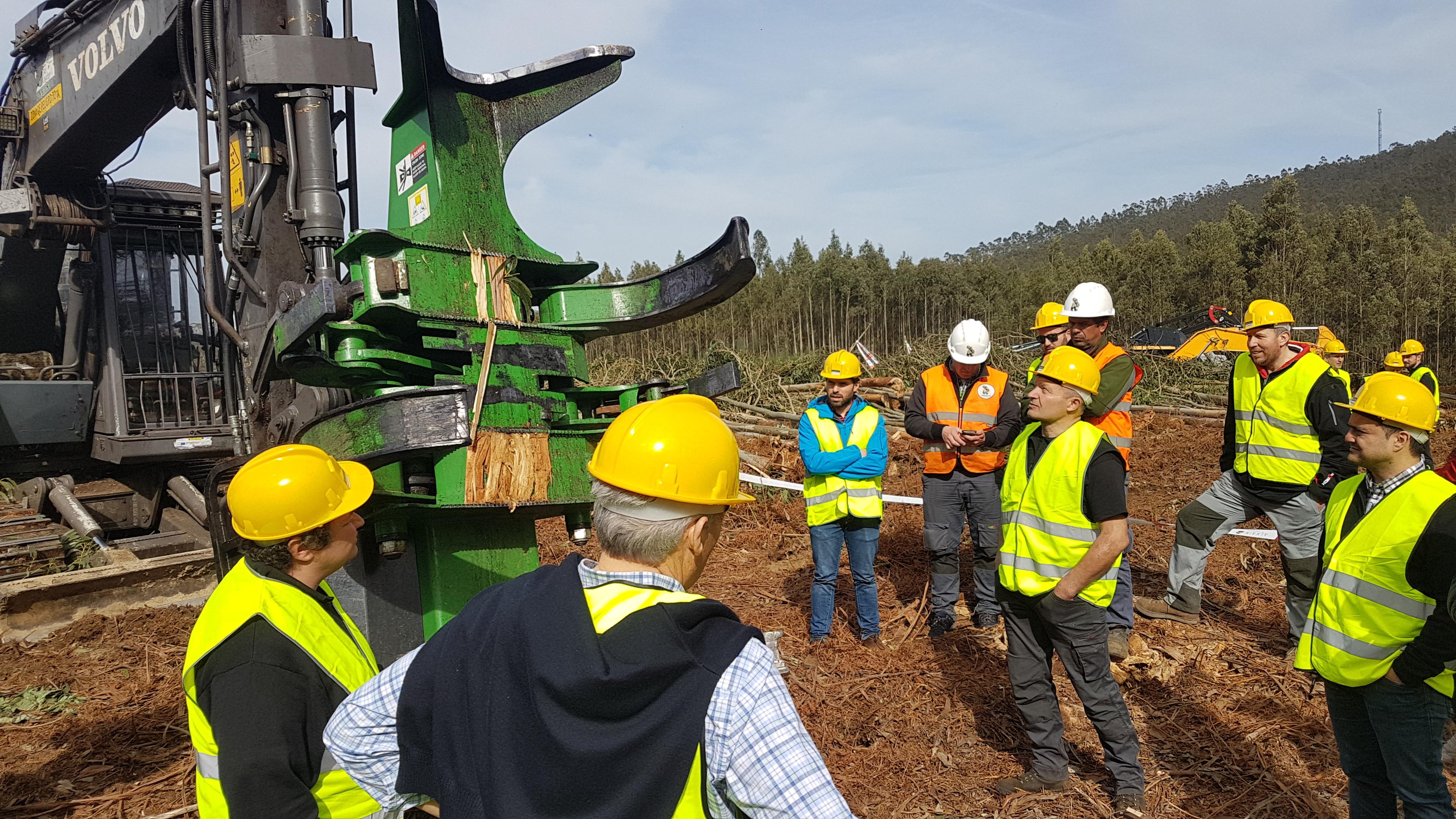 Forest Pioneer Presenta La Nueva Taladora De Cizalla TMF 600, Especial Para Eucalipto Y Made In Galicia
