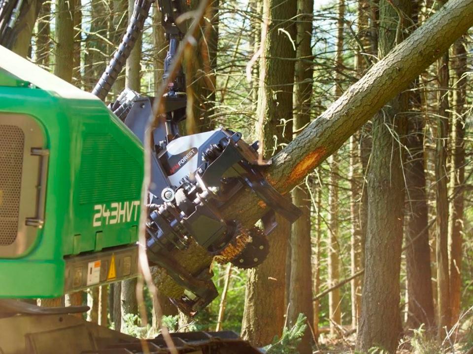 Cabezales Procesadores AFM Forest, El Procesado De Madera Más Rápido